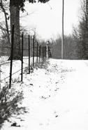 Snow2_1