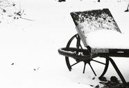Snow6_1
